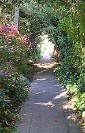 A picture named berkeleyPath.jpg