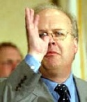 A picture named rove.jpg