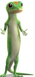 A picture named gecko.jpg